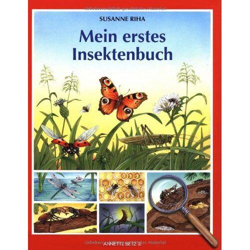 Susanne Riha - Mein erstes Insektenbuch - Preis vom 25.07.2021 04:48:18 h