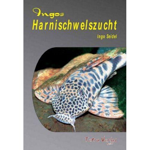 Ingo Seidel - Ingos Harnischwelszucht, m. DVD - Preis vom 13.06.2021 04:45:58 h