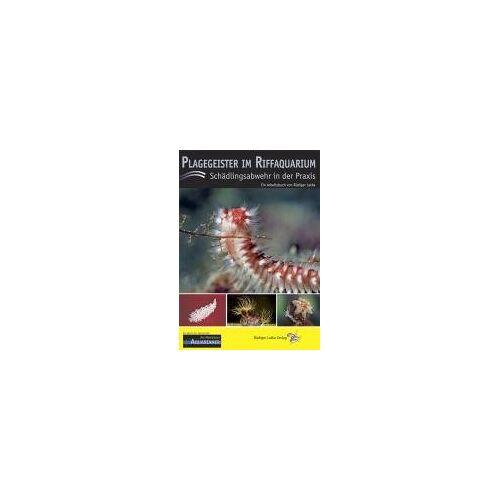 Rüdiger Latka - Plagegeister im Riffaquarium: Schädlingsabwehr in der Praxis - Preis vom 14.06.2021 04:47:09 h