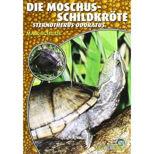 Maik Schilde - Die Moschusschildkröte: Sternotherus odoratus - Preis vom 14.06.2021 04:47:09 h