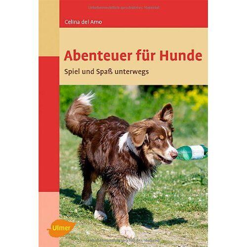 Amo, Celina del - Abenteuer für Hunde: Spiel und Spaß unterwegs - Preis vom 15.10.2021 04:56:39 h