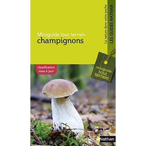 - Champignons - Preis vom 16.06.2021 04:47:02 h