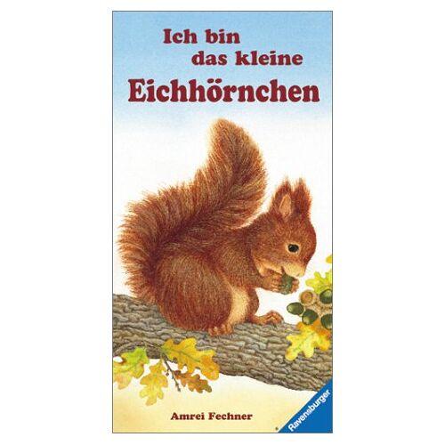 - Ich bin das kleine Eichhörnchen - Preis vom 31.07.2021 04:48:47 h