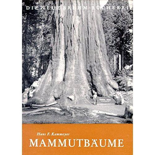 Kammeyer, Hans F - Mammutbäume - Preis vom 22.06.2021 04:48:15 h