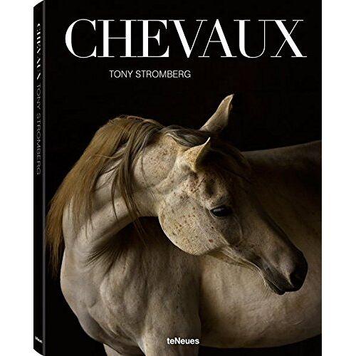 Tony Stromberg - Chevaux - Preis vom 17.06.2021 04:48:08 h