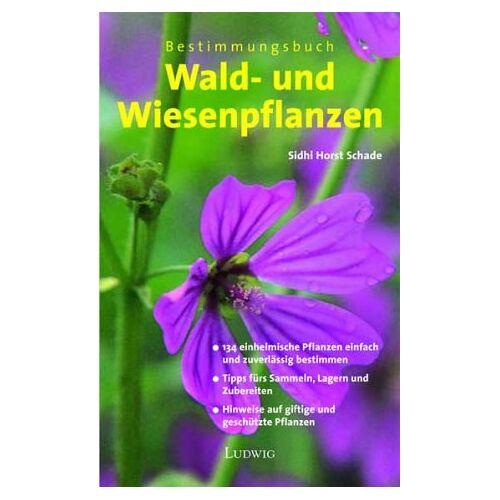- Bestimmungsbuch Wald- und Wiesenpflanzen - Preis vom 30.07.2021 04:46:10 h