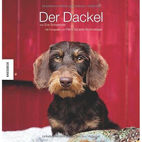 Eve Schwender - Der Dackel - Preis vom 21.06.2021 04:48:19 h