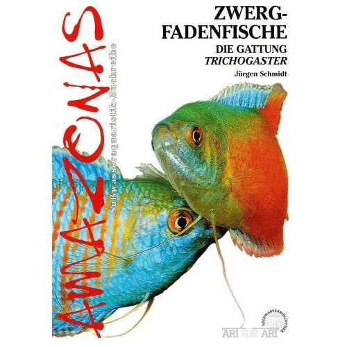 Jürgen Schmidt - Zwergfadenfische: Die Gattung Trichogaster - Preis vom 22.06.2021 04:48:15 h