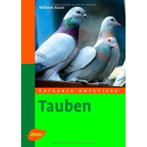 Wilhelm Bauer - Tauben: Ratgeber Nutztiere - Preis vom 13.06.2021 04:45:58 h