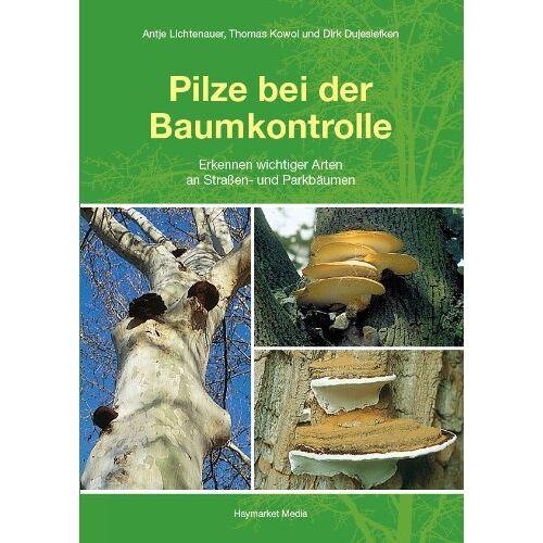 Dirk Dujesiefken - Pilze bei der Baumkontrolle: Erkennen wichtiger Arten an Straßen- und Parkbäumen - Preis vom 20.06.2021 04:47:58 h