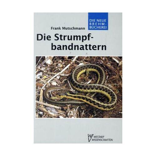 Frank Mutschmann - STRUMPFBANDNATTERN BIOLOGIE, VERBREITUNG, HALTU: Biologie, Verbreitung, Haltung - Preis vom 13.06.2021 04:45:58 h