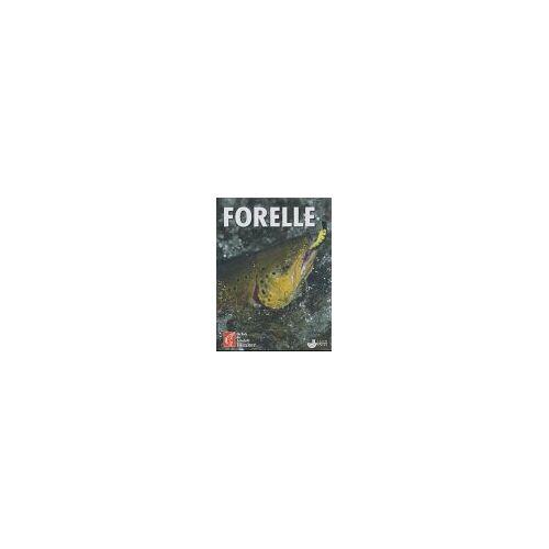 - Forellen - Preis vom 09.06.2021 04:47:15 h