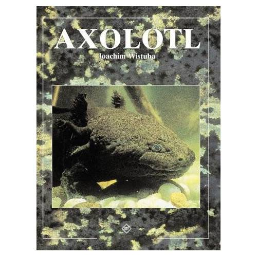 Joachim Wistuba - Axolotl - Preis vom 18.06.2021 04:47:54 h