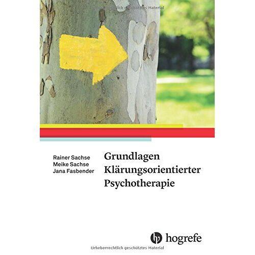 Rainer Sachse - Grundlagen Klärungsorientierter Psychotherapie - Preis vom 23.07.2021 04:48:01 h