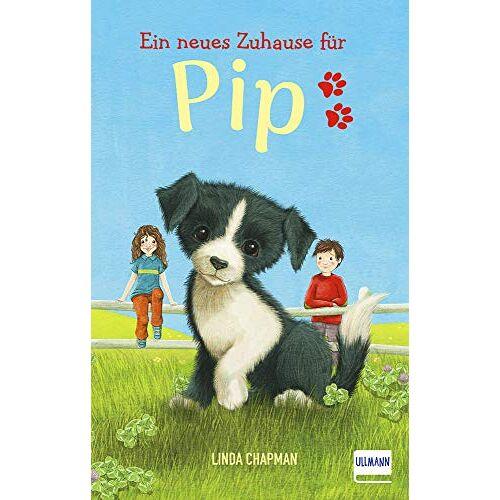 Linda Chapman - Ein neues Zuhause für Pip: (Kinderbuch ab 7 Jahren, Kinderbücher über Tiere) - Preis vom 11.06.2021 04:46:58 h