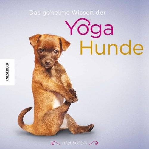 Dan Borris - Das geheime Wissen der Yoga-Hunde - Preis vom 16.10.2021 04:56:05 h