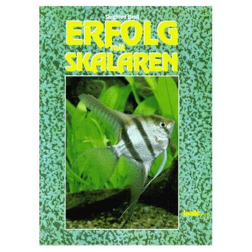 Siegfried Brall - Erfolg mit Skalaren - Preis vom 21.06.2021 04:48:19 h