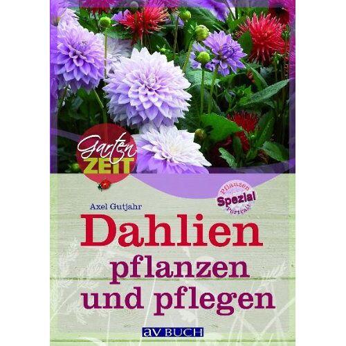 Axel Gutjahr - Dahlien pflanzen und pflegen - Preis vom 14.06.2021 04:47:09 h