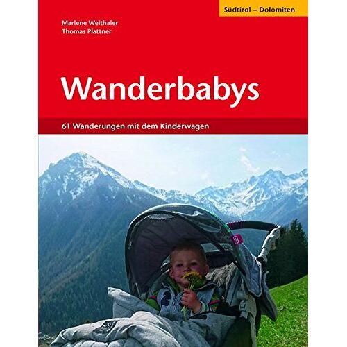 Thomas Plattner - Wanderbabys: 61 Wanderungen in Südtirol mit dem Kinderwagen - Preis vom 09.06.2021 04:47:15 h