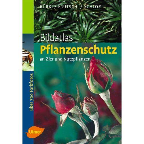 Moritz Bürki - Bildatlas Pflanzenschutz an Zier- und Nutzpflanzen - Preis vom 16.06.2021 04:47:02 h