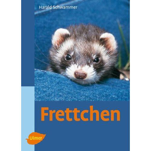 Harald Schwammer - Frettchen - Preis vom 15.06.2021 04:47:52 h