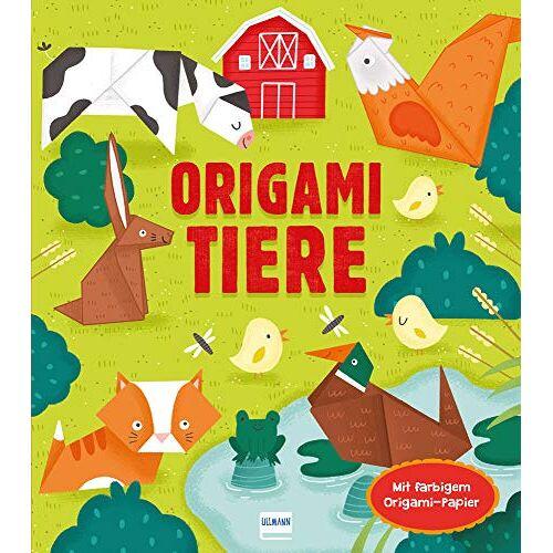 Anne Passchier - Origami Tiere: Mit 24 Blatt buntem Origami-Papier - Preis vom 21.06.2021 04:48:19 h