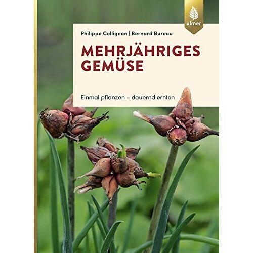 Philippe Collignon - Mehrjähriges Gemüse: Einmal pflanzen, dauernd ernten - Preis vom 11.06.2021 04:46:58 h