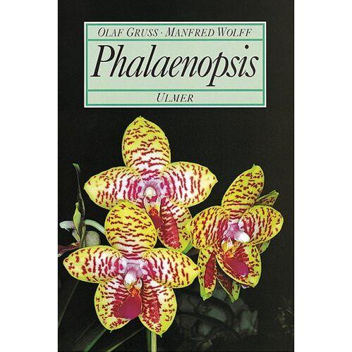 Olaf Gruß - Phalaenopsis - Preis vom 23.09.2021 04:56:55 h