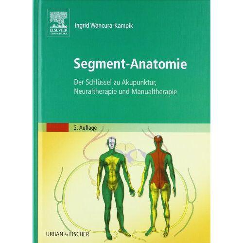 Ingrid Wancura-Kampik - Segment-Anatomie: Der Schlüssel zu Akupunktur, Neuraltherapie und Manualtherapie - Preis vom 01.08.2021 04:46:09 h