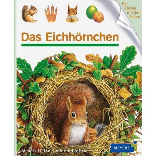 - Das Eichhörnchen - Preis vom 31.07.2021 04:48:47 h