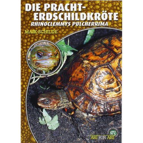 Maik Schilde - Die Pracht-Erdschildkröte: Rhinoclemmys pulcherrima - Preis vom 19.06.2021 04:48:54 h