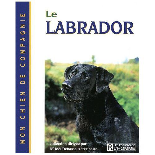 Joël Dehasse - LABRADOR - Preis vom 26.09.2021 04:51:52 h