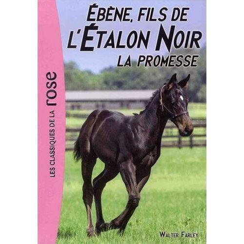 - L'Etalon Noir, Tome 21 : Ebène, fils de l'Etalon Noir : La promesse - Preis vom 18.06.2021 04:47:54 h