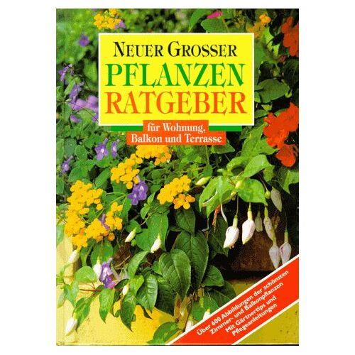 Gabriele Vocke - Neuer großer Pflanzenratgeber für Wohnung und Terrasse - Preis vom 22.06.2021 04:48:15 h