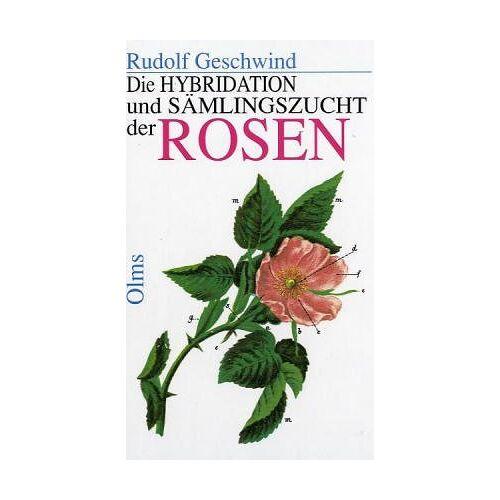 Geschwind Rudolf - Die Hybridation und Sämlingszucht der Rosen. - Preis vom 17.09.2021 04:57:06 h