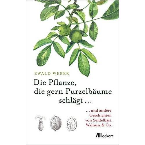 Ewald Weber - Die Pflanze, die gern Purzelbäume schlägt …: …und andere Geschichten von Seidelbast, Walnuss & Co. - Preis vom 11.06.2021 04:46:58 h