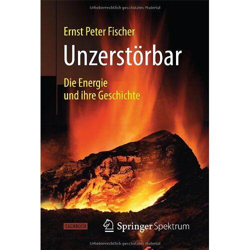 Fischer, Ernst Peter - Unzerstörbar: Die Energie und ihre Geschichte - Preis vom 20.06.2021 04:47:58 h