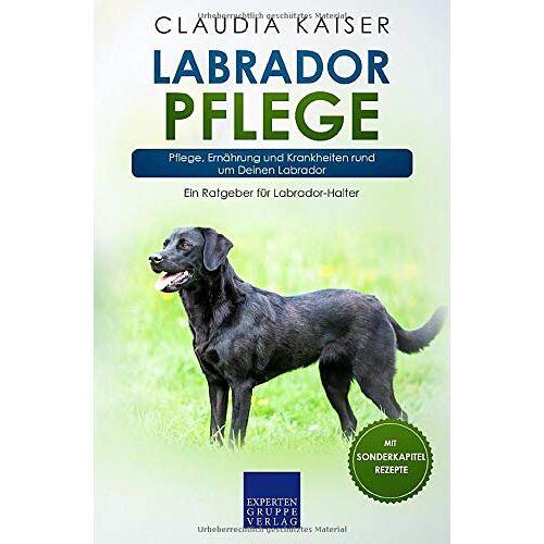 Claudia Kaiser - Labrador Pflege: Pflege, Ernährung und Krankheiten rund um Deinen Labrador (Labrador Band, Band 3) - Preis vom 26.09.2021 04:51:52 h