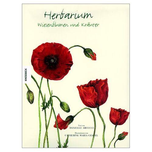 Danielle Arucci - Herbarium. Wiesenblumen und Kräuter - Preis vom 13.06.2021 04:45:58 h