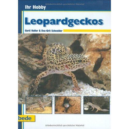 Gerti Keller - Leopardgeckos, Ihr Hobby - Preis vom 14.06.2021 04:47:09 h