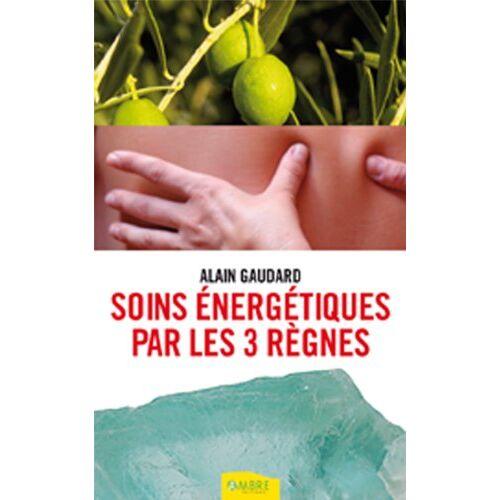 Alain Gaudard - 3 voies de soins énergétiques : Phythothérapie, lithothérapie, digitopression - Preis vom 01.08.2021 04:46:09 h