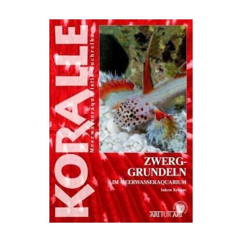 Inken Krause - Zwerggrundeln: im Meerwasseraquarium - Preis vom 06.09.2020 04:54:28 h