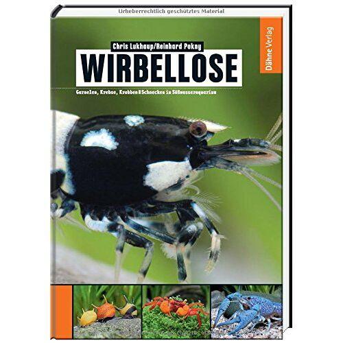Chris Lukhaup - Wirbellose - Garnelen, Krebse, Krabben & Schnecken im Süßwasseraquarium - Preis vom 20.10.2020 04:55:35 h