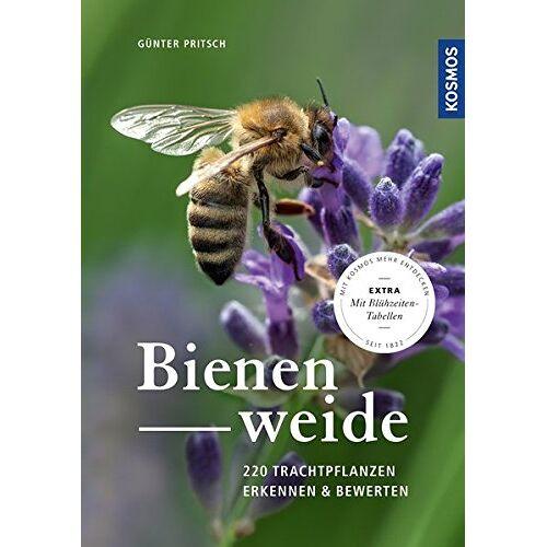 Günter Pritsch - Bienenweide: 220 Trachtpflanzen erkennen und bewerten - Preis vom 15.04.2021 04:51:42 h