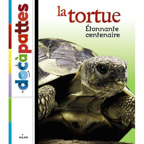 Paul Starosta - La tortue - Preis vom 04.09.2020 04:54:27 h