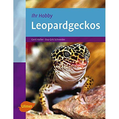 Gerti Keller - Leopardgeckos - Preis vom 01.03.2021 06:00:22 h