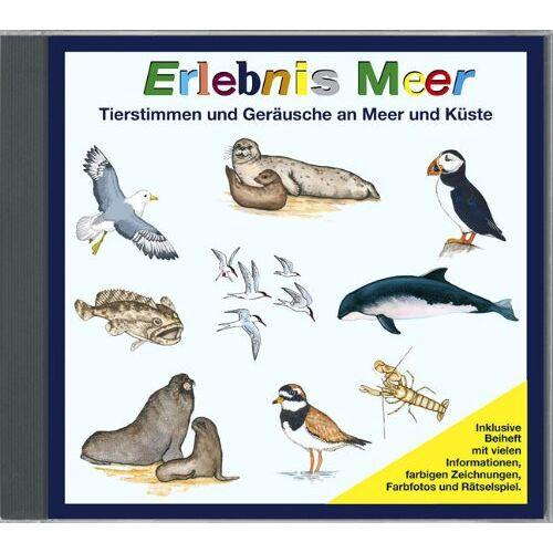 Tierstimmen - Erlebnis Meer - Tierstimmen und Geräusche an Meer und Küste - Preis vom 29.03.2020 04:52:35 h