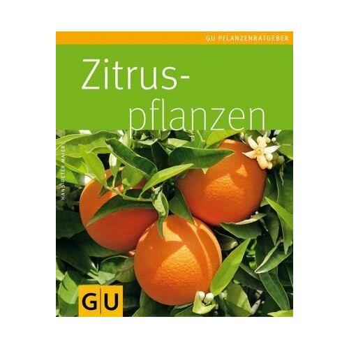Hans-Peter Maier - Zitruspflanzen (GU Pflanzenratgeber) - Preis vom 17.04.2021 04:51:59 h