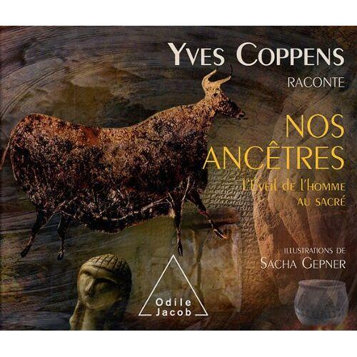 Yves Coppens - Yves Coppens raconte nos ancêtres : Tome 3, L'éveil de l'homme au sacré - Preis vom 09.05.2021 04:52:39 h