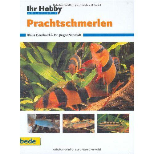 Klaus Gernhard - Prachtschmerlen, Ihr Hobby - Preis vom 19.01.2021 06:03:31 h